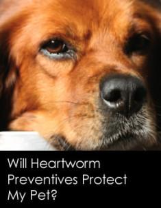 230201308-preventives-protect