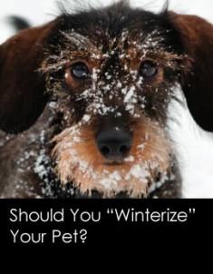300201210-winterize