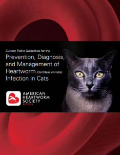 2014-feline-guidelines