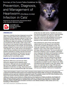 2014-feline-guidelines-summary