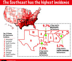 0000003_07_AHS_Incidence_Infographic