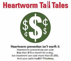 0000005-Tall_Tales_cost