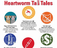 0000006-Tall_Tales_composite