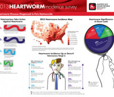 heartworm-incidence