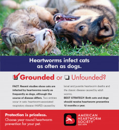 12 Cat infection rate same 150dpi
