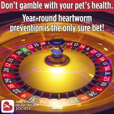 2021-poster-DontGamble.roulette_7APR21