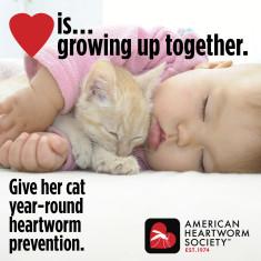 2021-poster-LoveIs.Kitten.Girl_14APR21