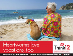 Heartworm-Love-Vacations-3
