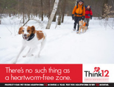 Heartworm-free-Zone-1
