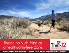 Heartworm-free-Zone-2