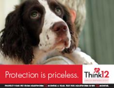Priceless-1