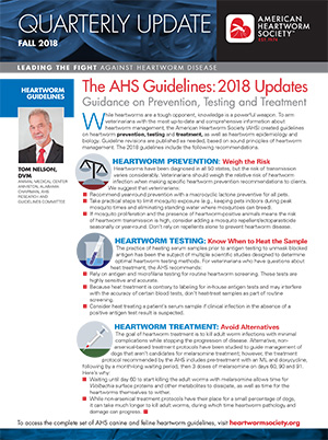 AHS Jul 18 Summer Bulletin PDF